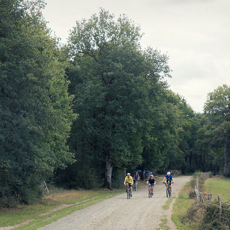 Rutas con bicicleta (os prestamos)